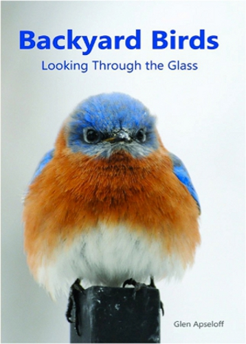Backyard Birds: Looking Through The Glass by Glen Apseloff
